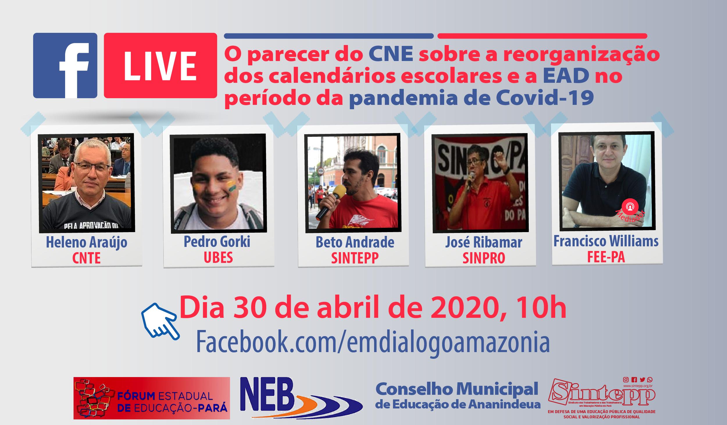 Parecer do CNE sobre os calendários escolares e EAD em período de pandemia